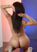 Sexy brunette transsexual Foxxy posing and stripping